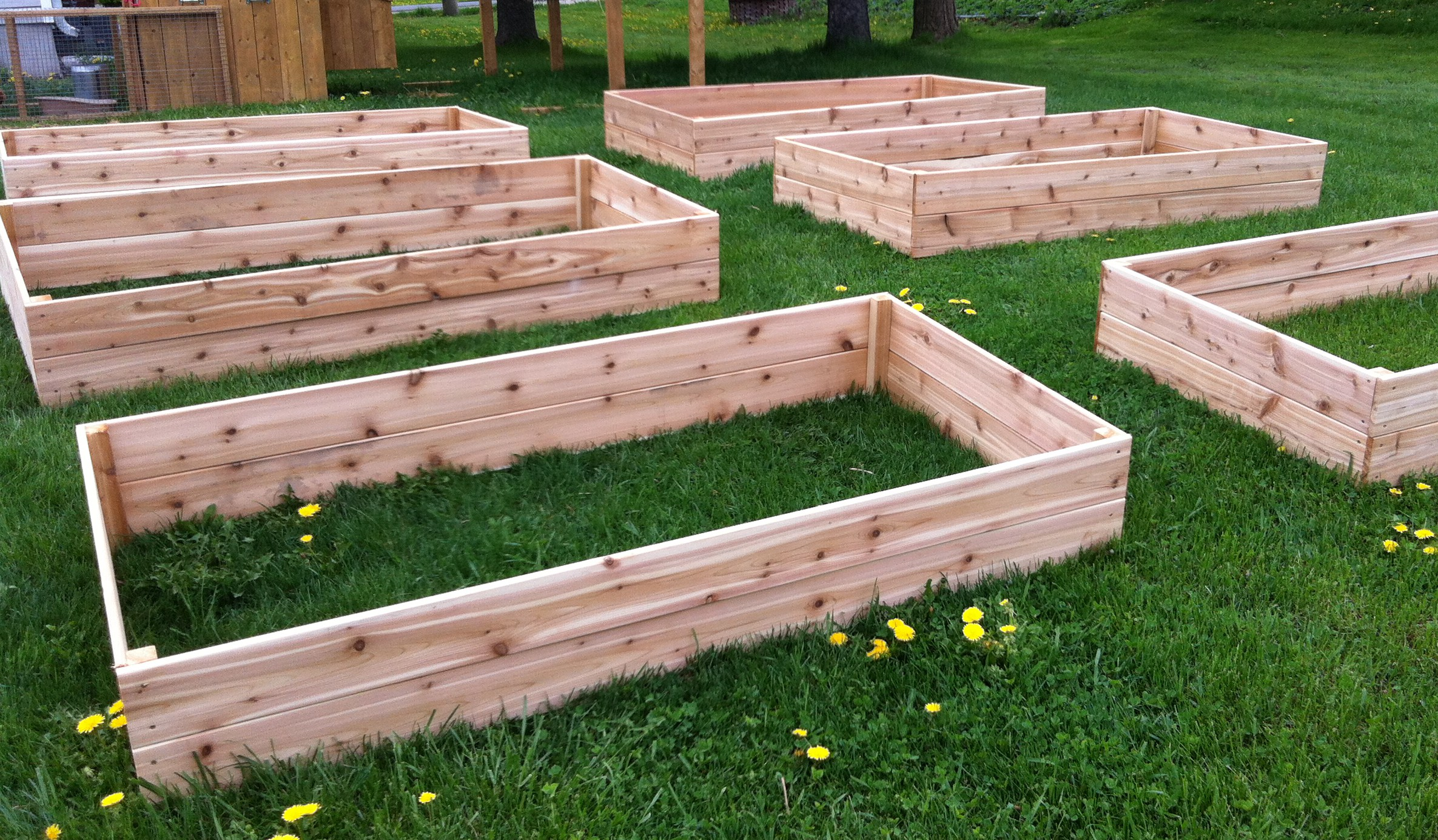 Building Our Garden Boxes Our Crazy Homestead Life